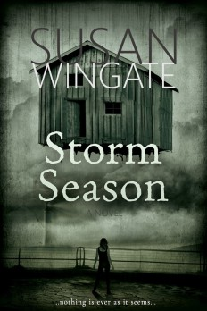01302019 - Front Cover - STORM SEASON - eBook